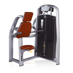 BFT<font color='red'>2001</font>b Wholesale Triceps Dip Machine Gym Equipment Factory